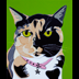 Kubba the Calico cat portrait